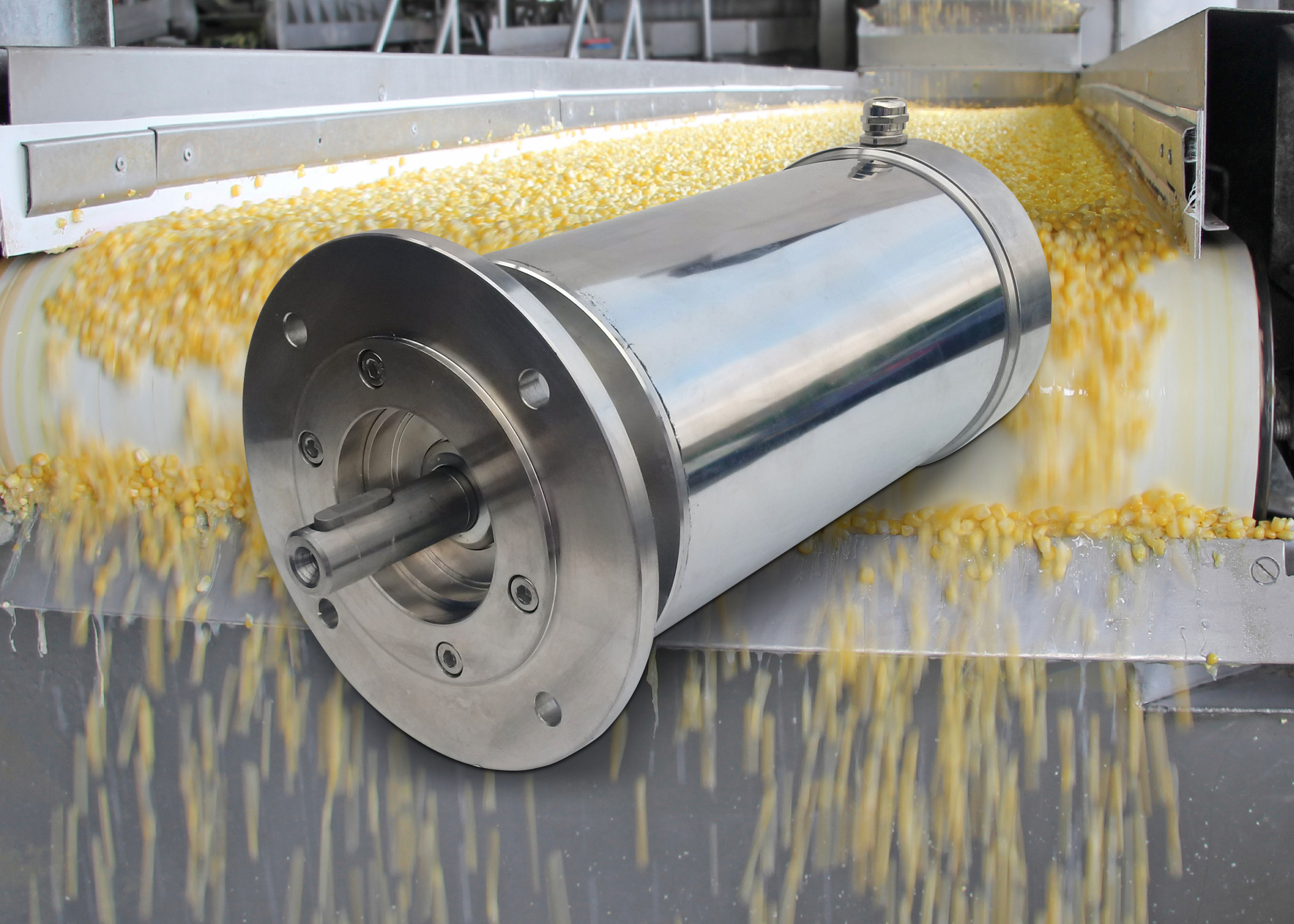 Food processors shine with stainless steel motors