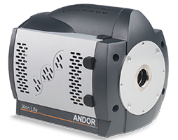 iXon Life EMCCD is engineered to deliver single photon sensitivity with absolutely unparalleled price/performance