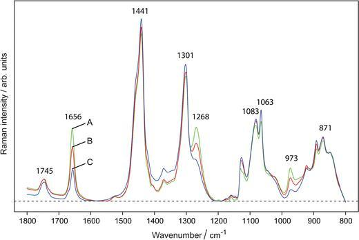 Raman spectroscopy offers potential for fast, non