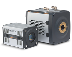 sCMOS cameras combine ultra-low noise, extremely rapid frame rates, wide dynamic range, large field of view and high-resolution