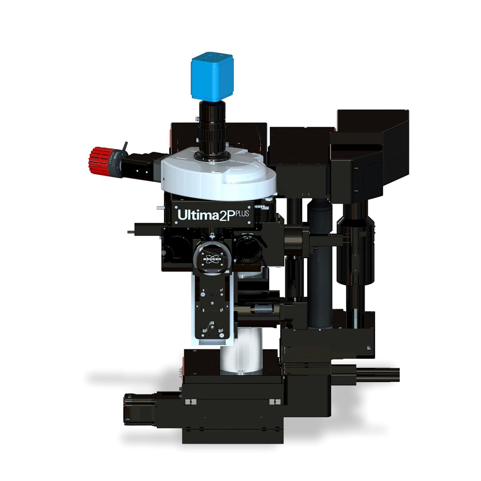 Ultima 2Pplus Multiphoton Microscope