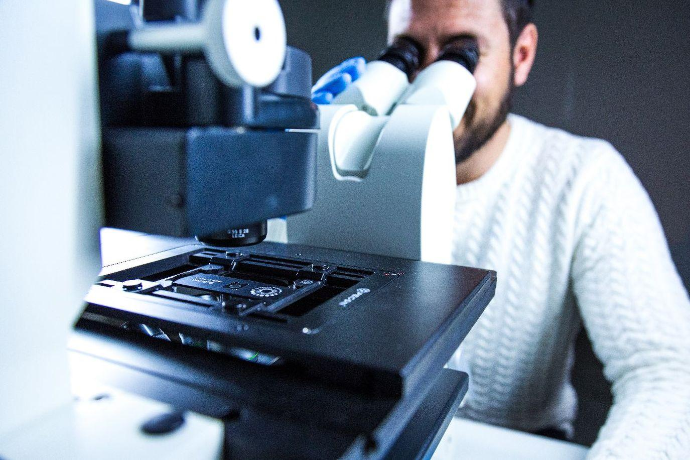 Figure 5: Fluorescence microscopy quality checks using an Argolight slide