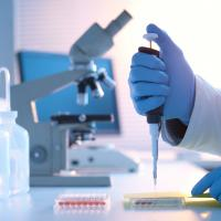 Bridging the gap with innate and adaptive immunity