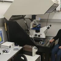 Retrovirus research progress