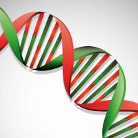 Gene expression analysis service