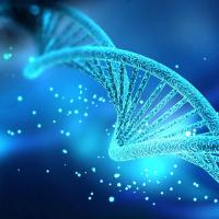 Flexible and precise control of gene expression