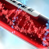 Circulating tumour DNA reference standards