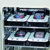 Incubation monitoring system launched