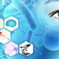 Collaboration to develop technologies for epigenetic analysis